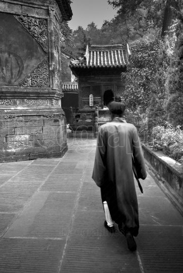 Wudang Tai Chi master with a sword
