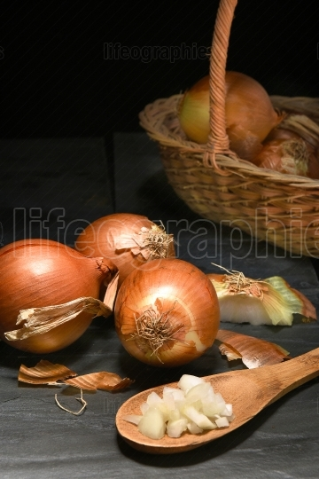 Yellow Onion Still Life