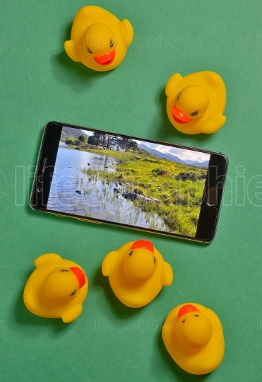 Yellow rubber duck and smartphone concept