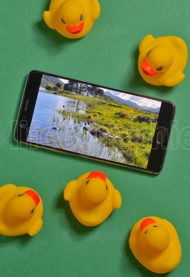 Yellow rubber ducks and smartphone concept