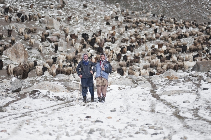 Young girls from upper shimshal looking after sheep
