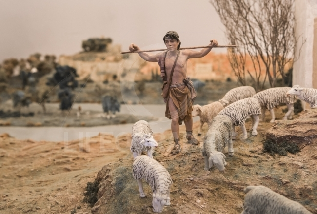 Young Shepherd at rise