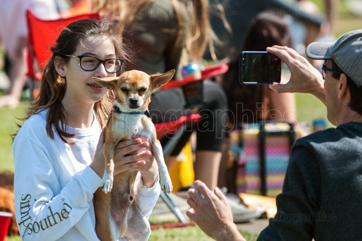 Young Woman Lifts Up Chihuahua To Take Smartphone Photo