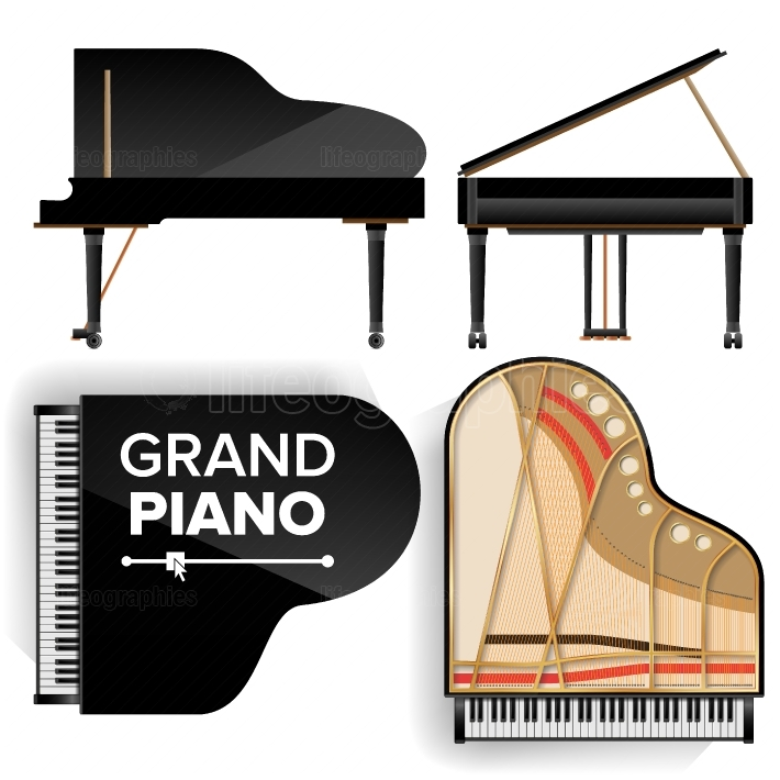 Black Grand Piano Set Icon Vector With Shadow  Realistic Keyboard  Isolated Illustration  Top And Back View