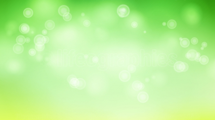 Blur Abstract Image With Shining Lights Vector  Green Bokeh Background