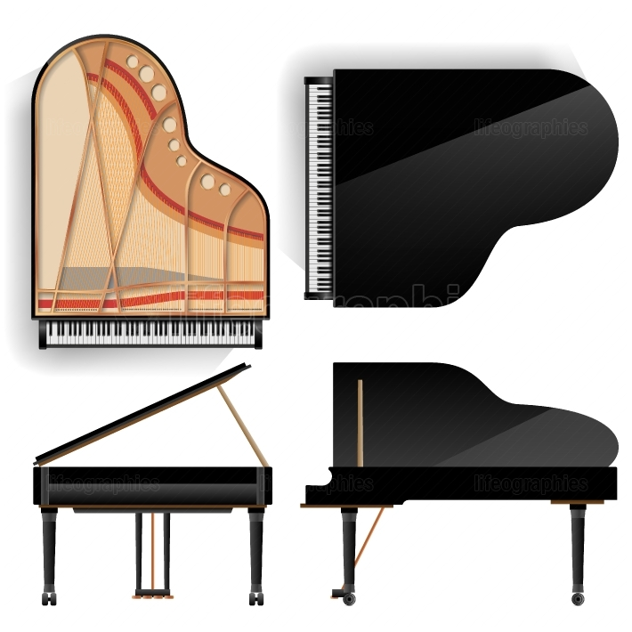 Grand Piano Set Vector  Realistic Black Grand Piano Top And Back View  Opened And Closed  Isolated Illustration  Musical Instrument