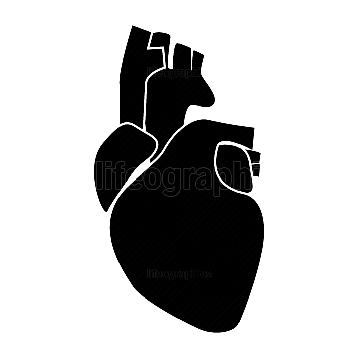 Human heart black color icon