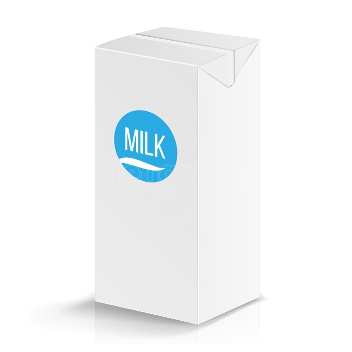 Milk Package Vector Mock Up  Realistic Illustration  Blank Box 1000 ml  Milk Template Retail Package Blank Template Isolated