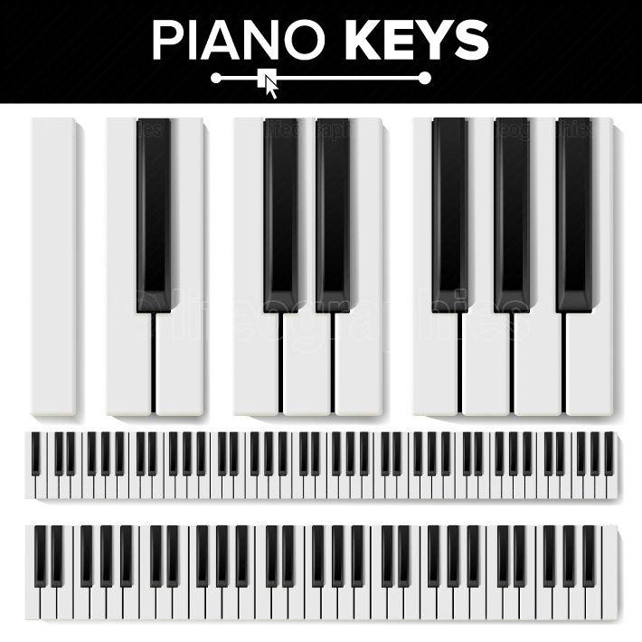 Piano Keyboard Vector  Realistic Isolated Illustration  Musical Piano Key Top View  Keyboard Pad